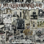 Resenha: Mushroomhead – A Wonderful Life – (2020)